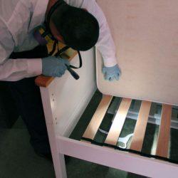 科罗拉多害虫管理技术员用手电筒在床垫下寻找