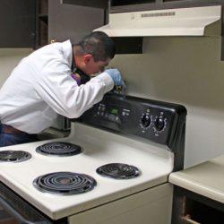 科罗拉多害虫管理技术员用手电筒看着烤箱后面
