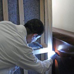 科罗拉多害虫管理技术员拿着手电筒看墙后