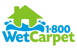 1 800 Wet-Carpet