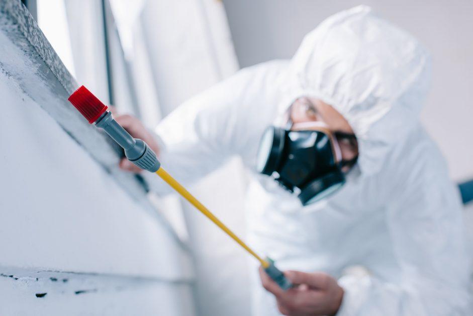 exterminator-applying-pest-control-insulation