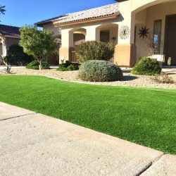Waterless grass lawn in Phoenix by 21st Century Grass