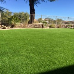 Artificial turf in Phoenix yard by 21st Century Grass
