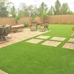 Grass turf in backyard in Phoenix by 21st Century Grass
