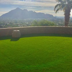 Grass turf lawn overlooking Phoenix by 21st Century Grass