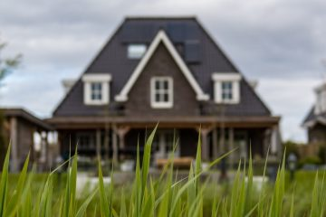 Image of a house in the background with tall blades of grass in the foreground.