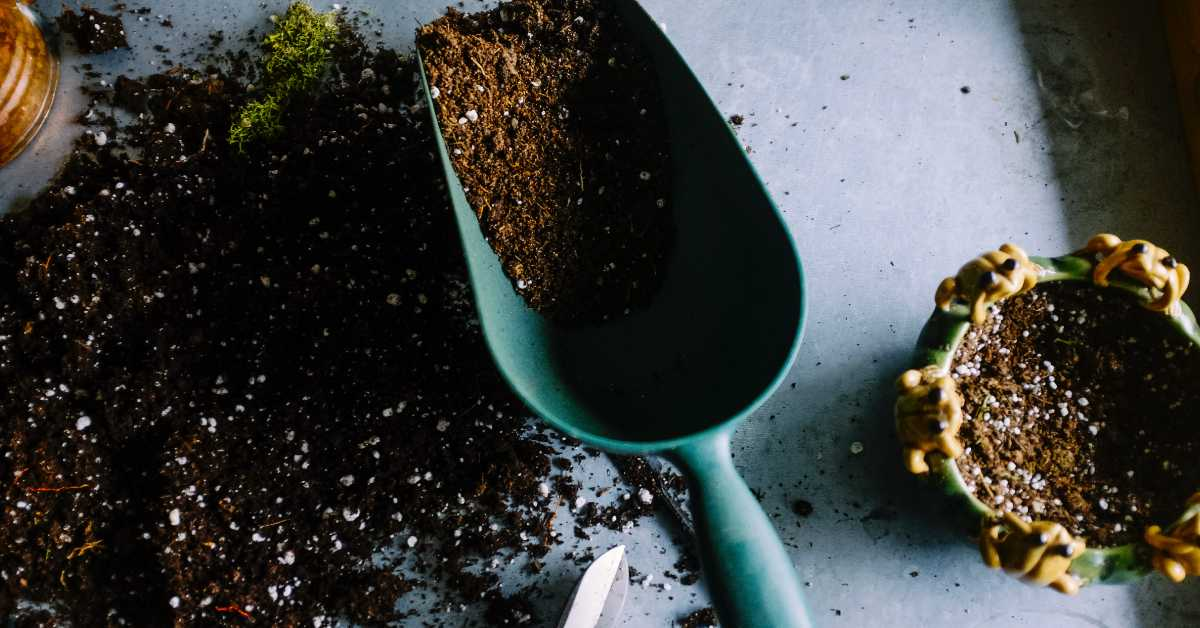 picture of dirt and a trowel