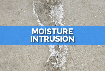 Moisture Intrusion Repair FL| A1 Roofing & Waterproofing