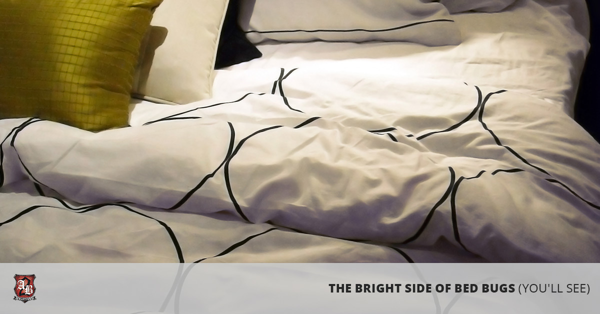 Bed Bugs Greeley: Looking at the Bright Side