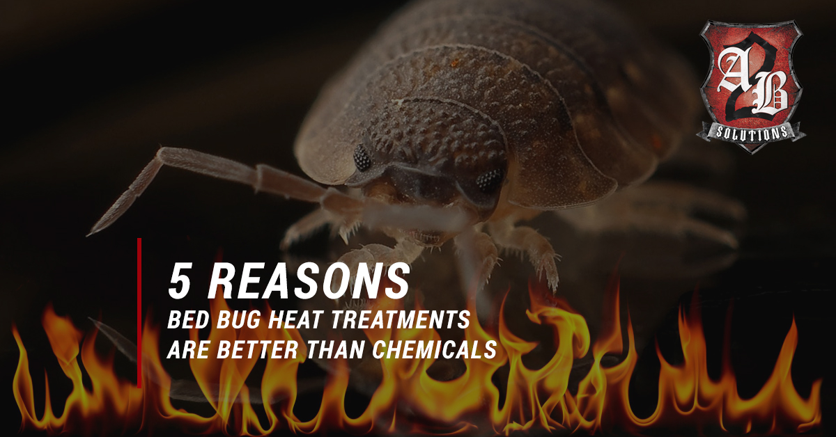 Bed Bug Heat Treatment Denver 5 Reasons Bed Bug Heat Treatments Are