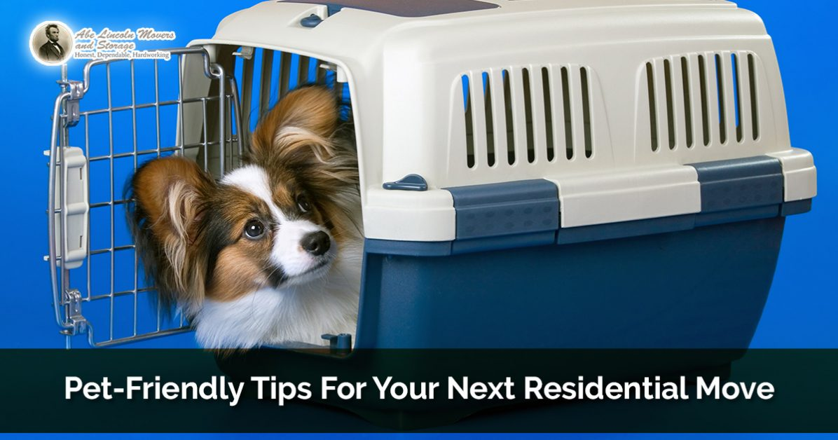 Residential Moving Denver: Pet Friendly Tips For Your Next