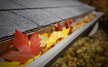 home gutter full of leaves that needs cleaning