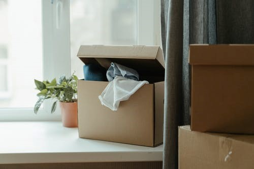 A box of items and a potted plant in an apartment on moving day