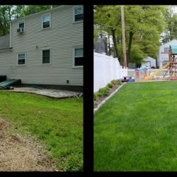 Before and After Lawn Walpole