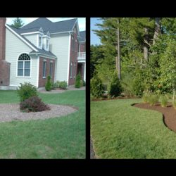 Yard Design and Maintenance