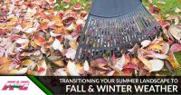 Transitioning Your Summer Landscape to Fall & Winter Weather