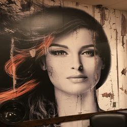 Business interior with printed mural of women's hair - Action Signs