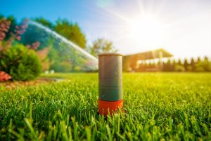 sprinkler repair northern colorado