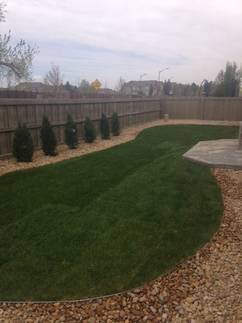 colorado landscape renovation
