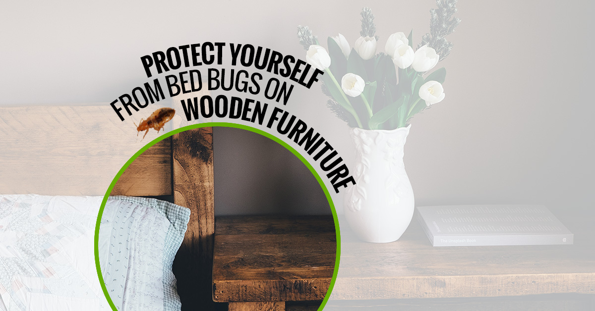 protect-yourself-from-bed-bugs-on-wooden-furniture