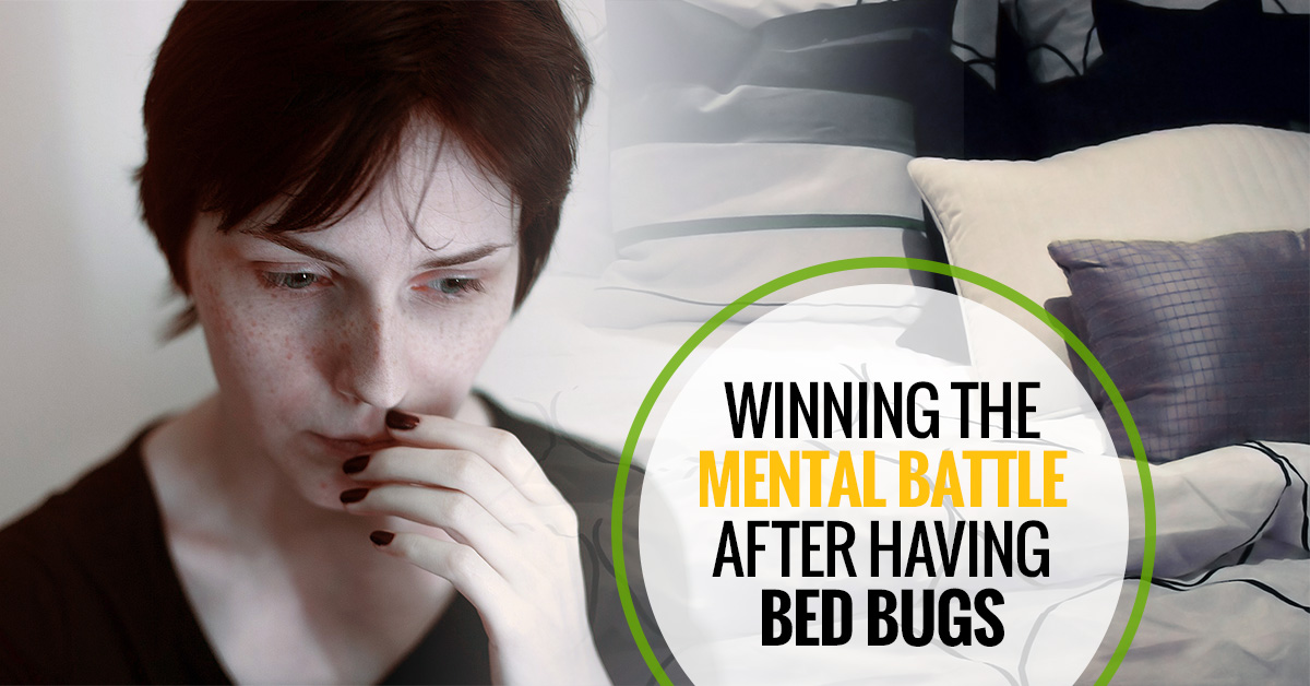 winning-the-mental-battle-after-youve-had-bed-bugs