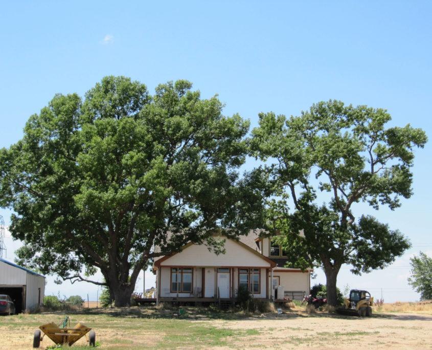 Ault-CO-138-Acres-Irrigated-Farm_7-845x684