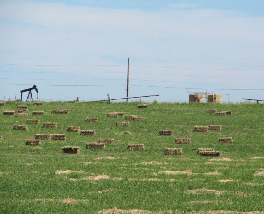 Ft.-Lupton-CO-53-Acres-Irrigated-Farm_8-845x684