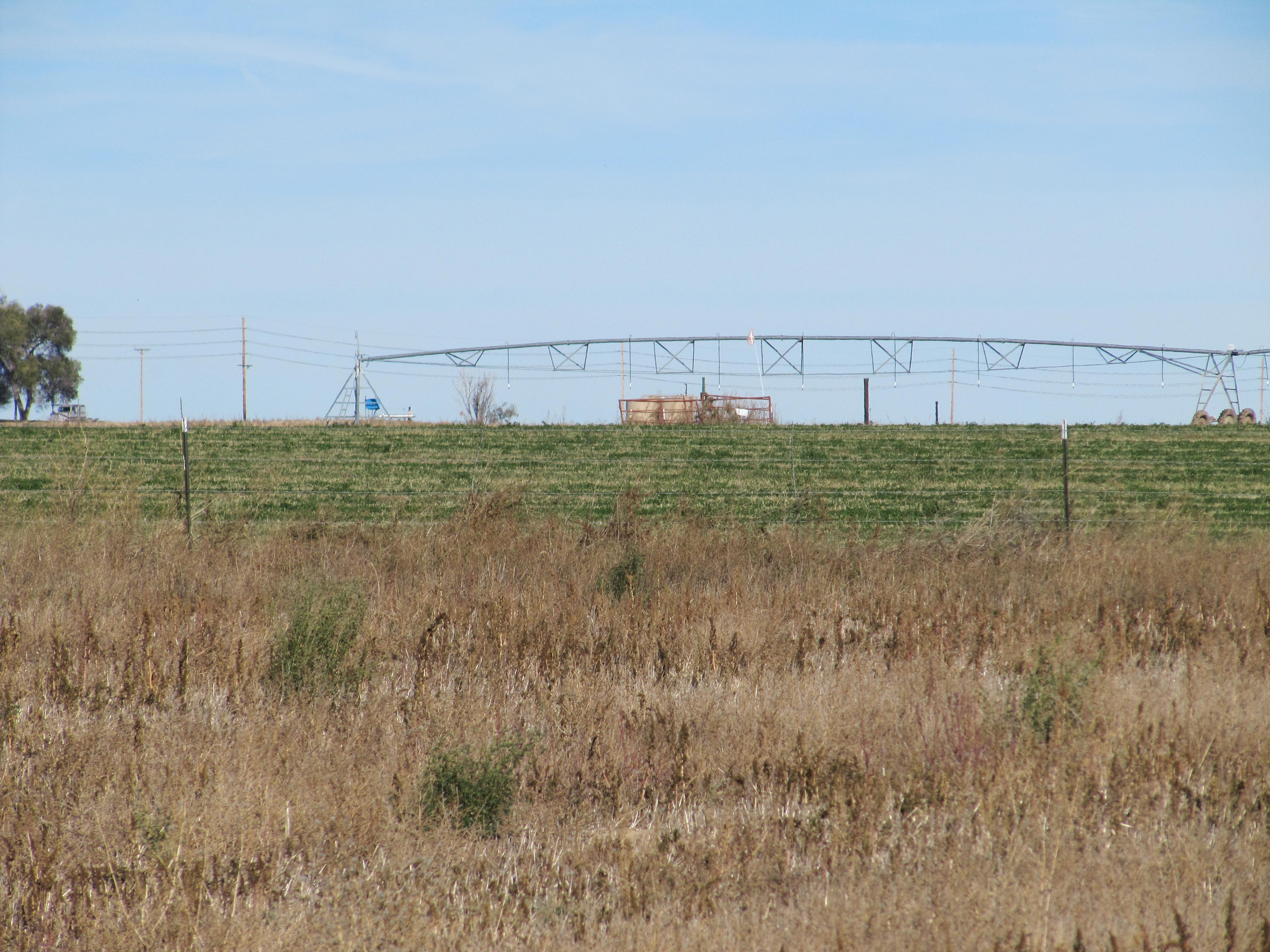 gill-co-3-98-acres-homesite_1