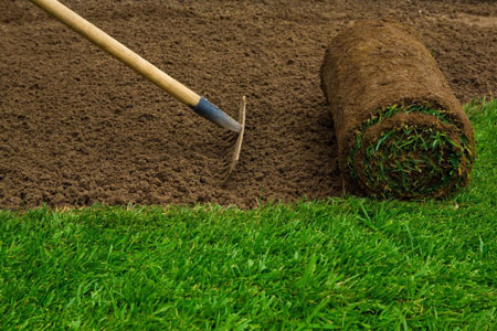 Sod and Lawn Installation - Enhance Your Los Angeles Home's