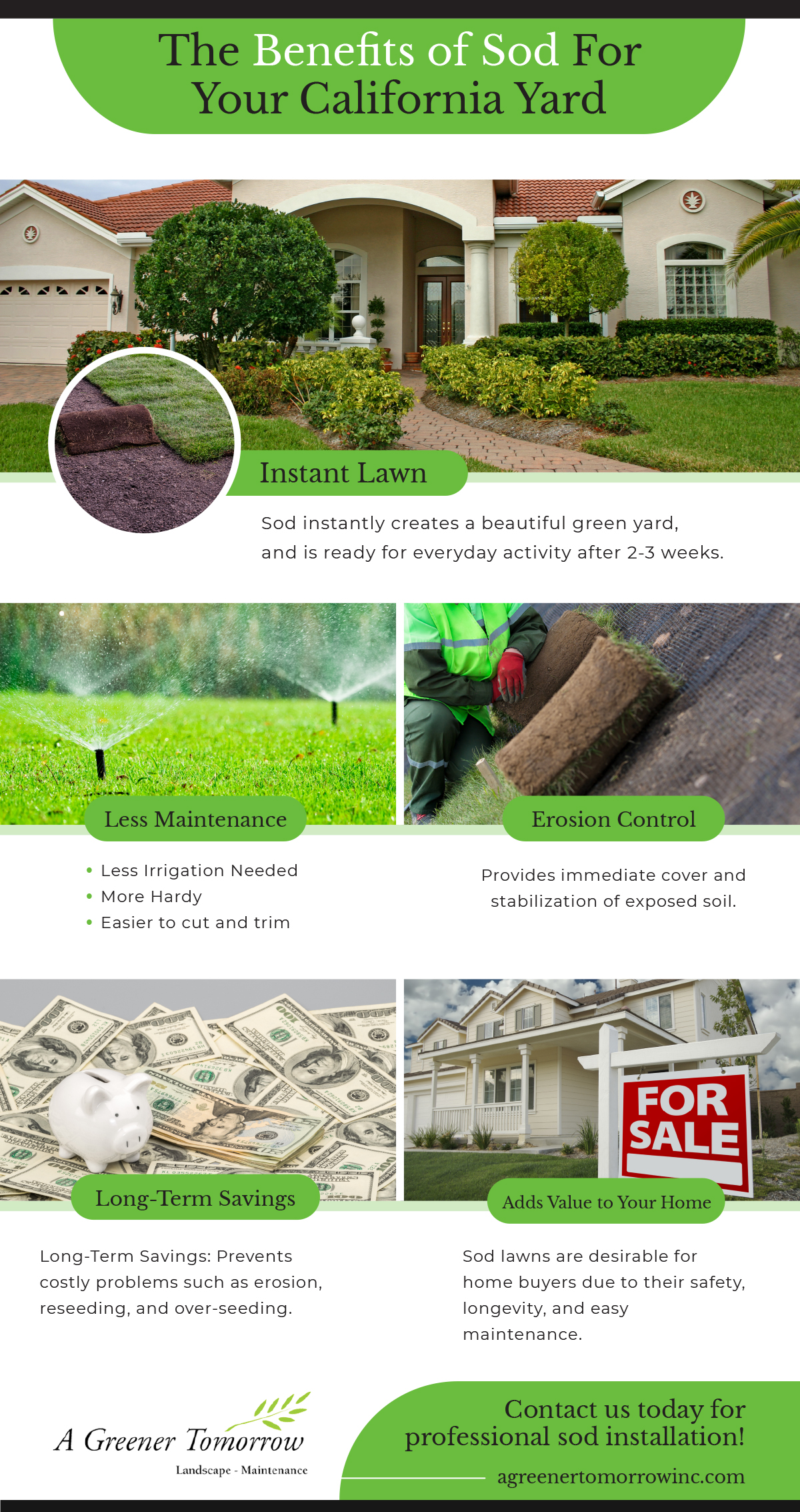 Infographic about Sod