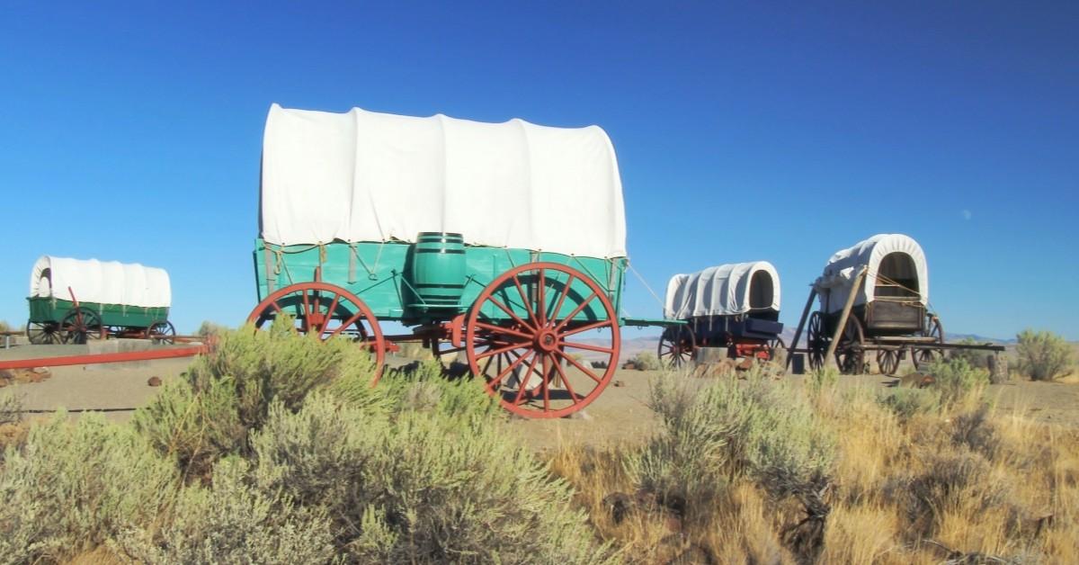 wagon train AIM Adoptions houston