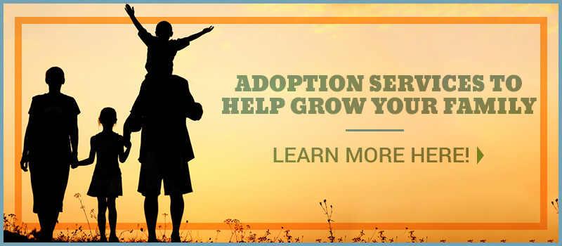 Adoption Agency Ca Debunking Popular Myths On Open Adoption