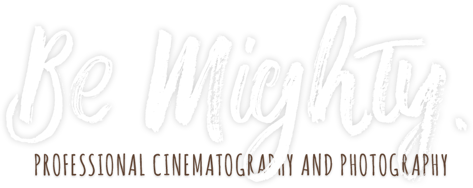 Wild Acorns Media