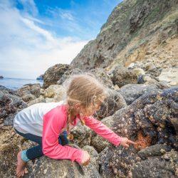 Sofia finds a starfish