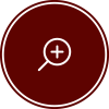 Roof Inspections Icon