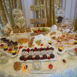 Wedding dessert table featuring chocolate covered strawberries, candy corn, caramel apples, cupcakes, and fruit.
