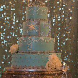 "Blue quinceañera cake with a ""15"" at Alegria Gardens Reception Hall in Houston."