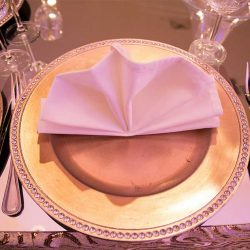 Folded napkin and plate at our wedding venue - Alegria Gardens