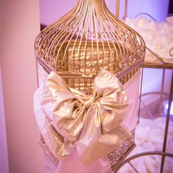 Bird cage wedding card holder at our reception hall - Alegria Gardens