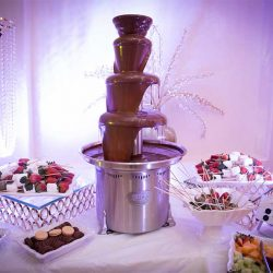 Fondue display at our reception hall - Alegria Gardens