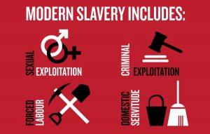 Human Trafficking Forms