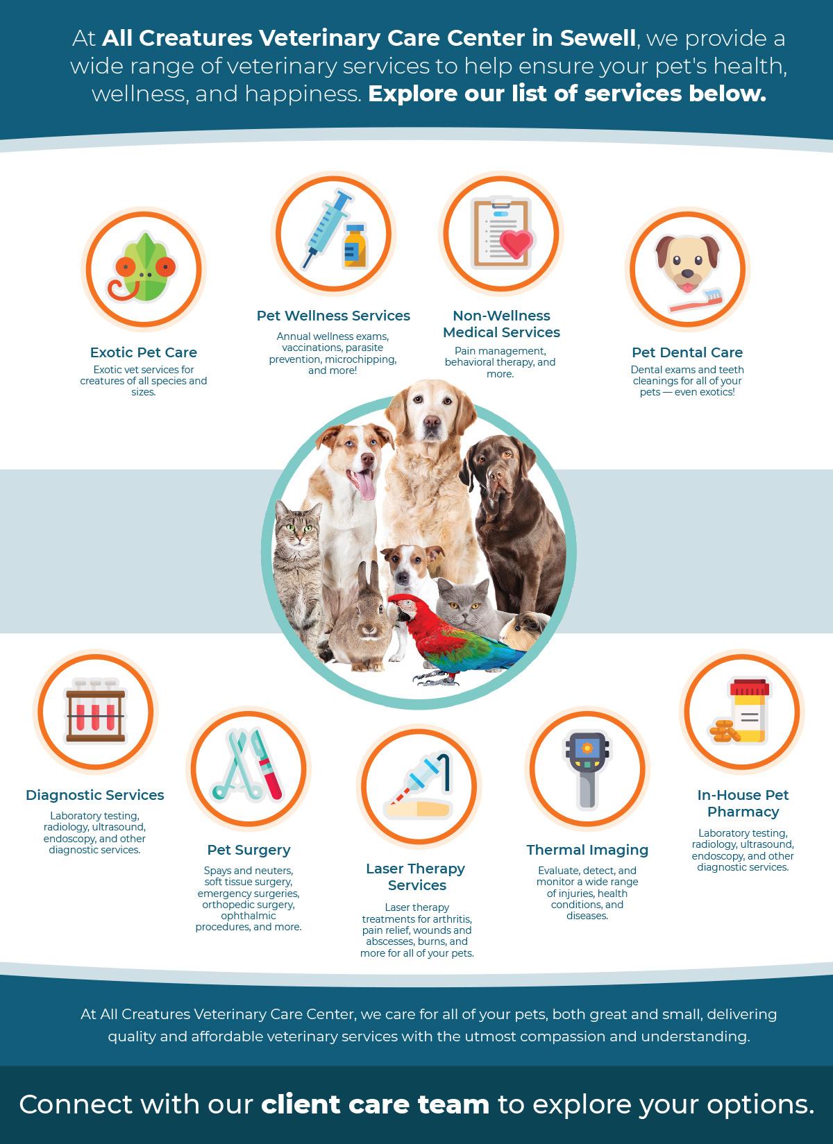 infograph about pet services
