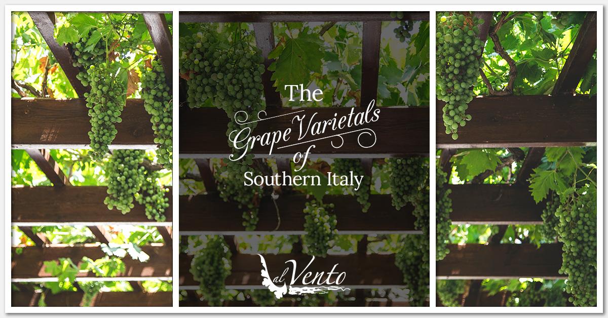 Italian Restaurant Minneapolis: Grapes of Southern Italy
