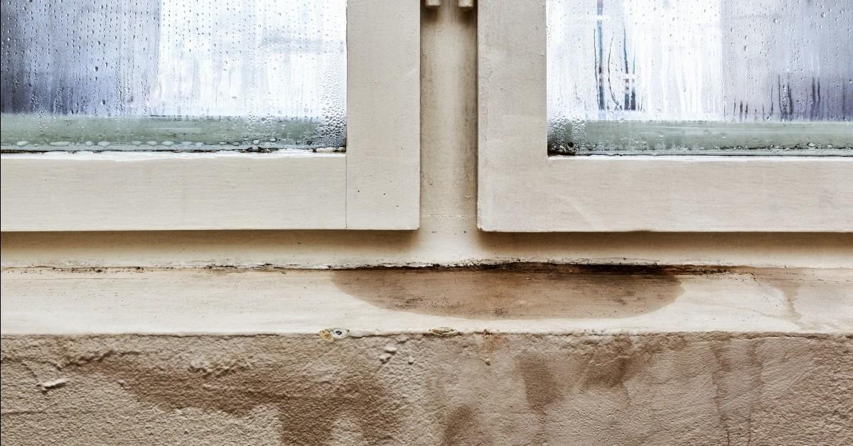 Leaky Basement Windows