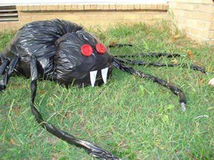 trash bag spider