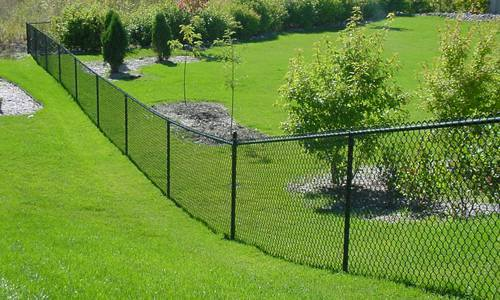 Exceptionnel Chain Link Fence