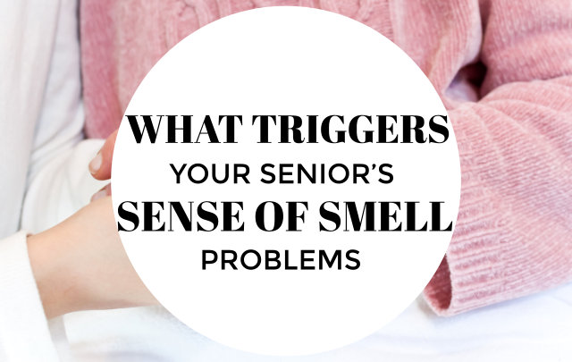 what-triggers-your-seniors-sense-of-smell-problems