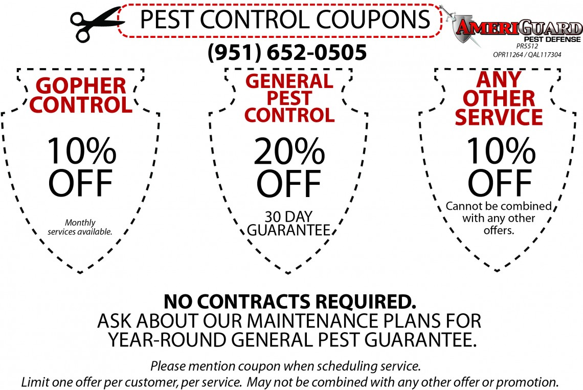 Website Pest Control Coupon