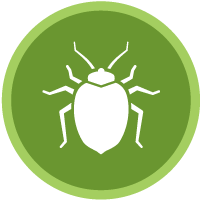 Stamford tick control and pest management services