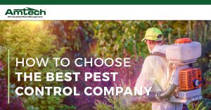 What to look for in a pest control company